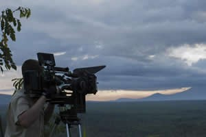 Filming Gorillas in Volcanoes